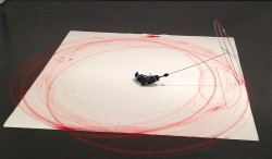 Andreas Marti<br />